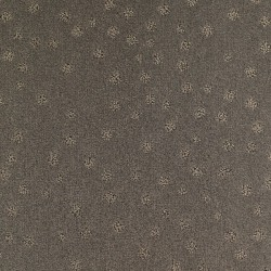 Moquette beige cendré, collection Milano