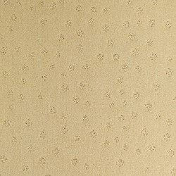 Moquette beige sable, collection Milano