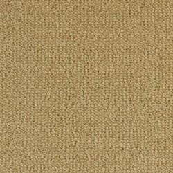 Moquette beige intense, collection Allure