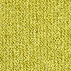 Dalle moquette vert anis, collection Sunny