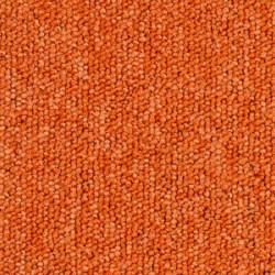 Dalle moquette orange, collection Sunny