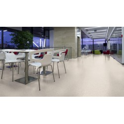 Sol PVC Tarkett blanc 3040453 - locaux collectifs