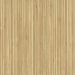 Lame PVC Amtico Engineered bamboo SS5W2546, grand passage