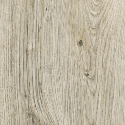 Lame PVC Amtico Sun bleached oak SS5W2531GL, grand passage