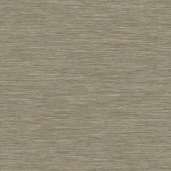 Lame PVC plombante Tarkett Bois delicat gr�ge 24640012